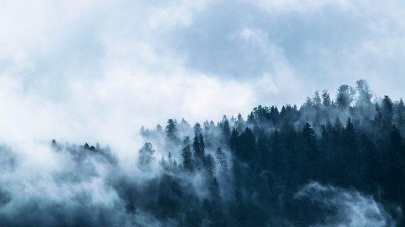 fog-1535201_1920-1024x683.jpg